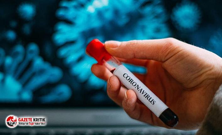 Çinli uzman corona virüsün biteceği tarihi açıkladı!