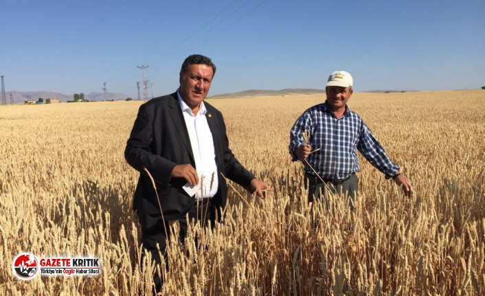 """Gürer: """"Tarım sektöründe genç çiftçi desteklenmelidir"""""""