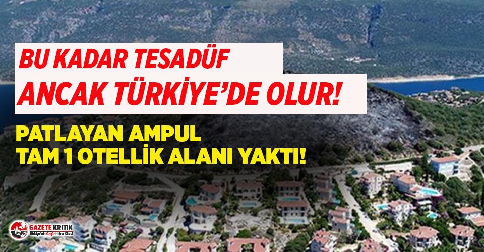 Antalya'da yangın sonrası çıkan manzara dikkat...