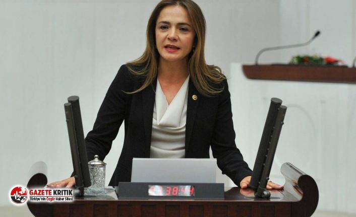 CHP'li İlgezdi: Kültür Bakanlığı emekleri...