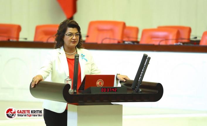 CHP'li Şahin: Çiftçilerin sorununa hükümet acilen çözüm üretmeli!