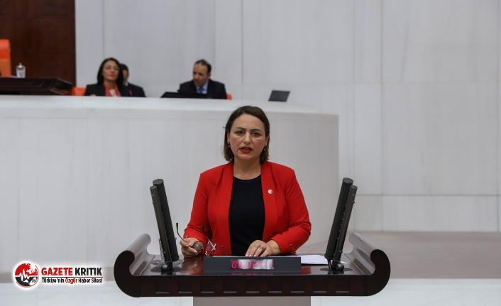 CHP'li Şevkin: Tarım Bakanına soru sorduk, sesini yükselten TARSİM oldu!