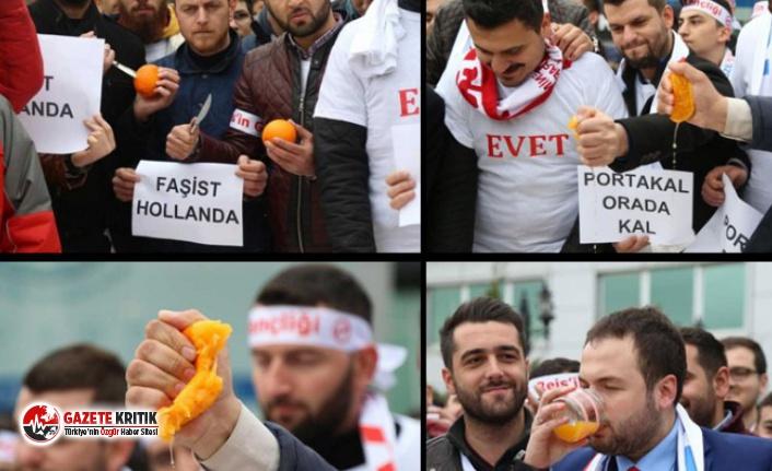 İşte AKP'nin 18 yılda yarattığı ülke!...