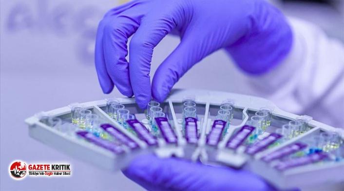 Kovid-19 ile demans arasında genetik ilişki tespit edildi