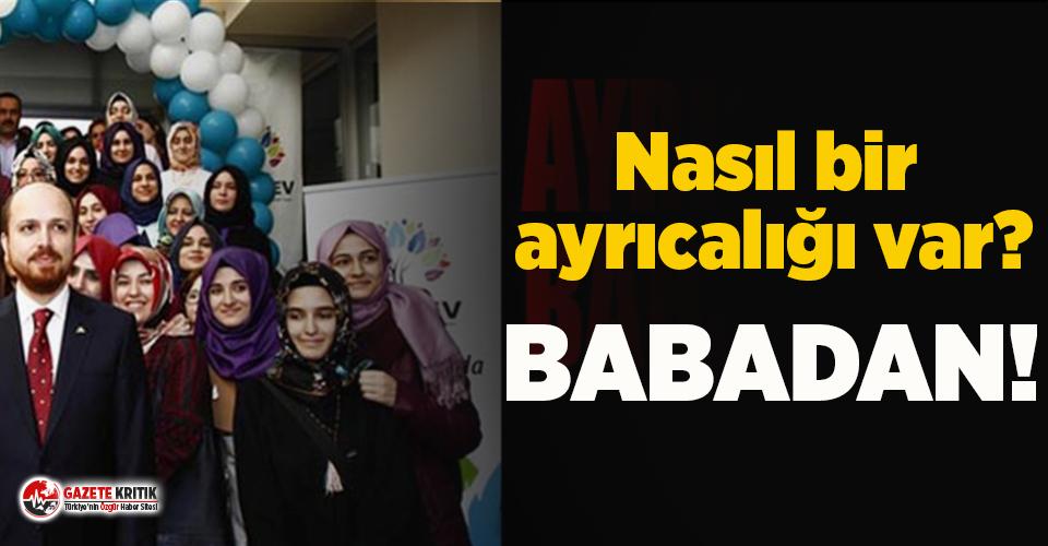 AKP'li belediye Bilal Erdoğan'ın vakfının...