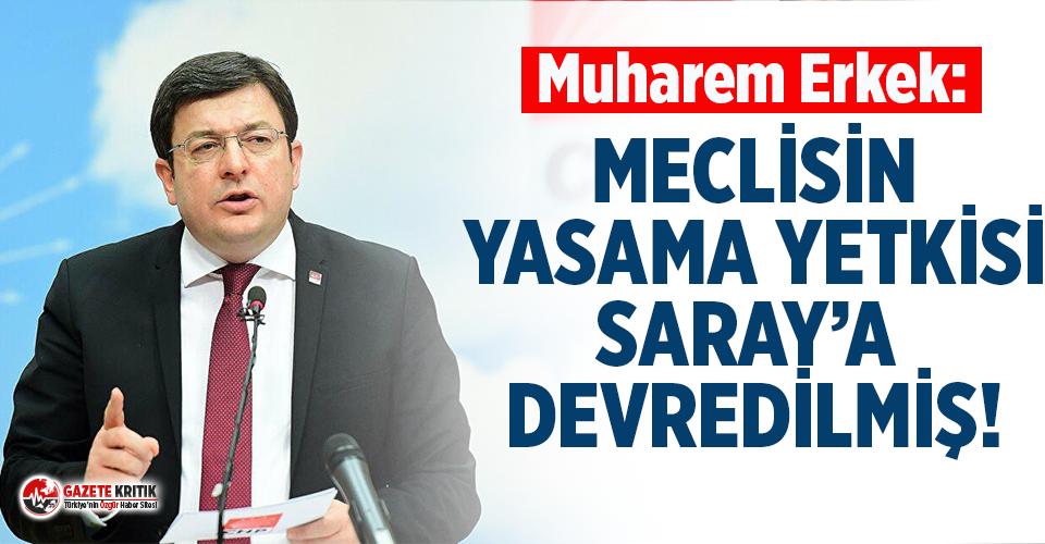 CHP'li Erkek : ''Meclisin Yasama Yetkisi...