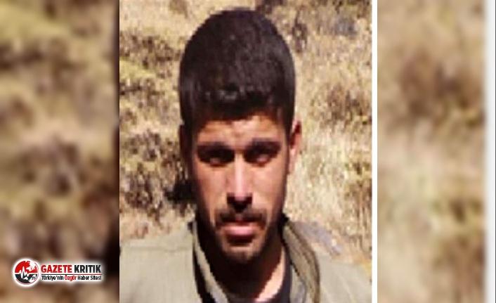 Diyarbakır'da etkisiz hale getirilen terörist,...