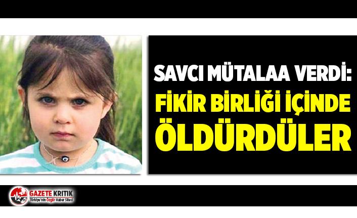 "Leyla Aydemir davasında savcı mütaala verdi: ""Fikir..."
