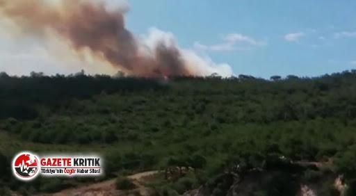 Adalar Belediye Başkanı'ndan yangın açıklaması!