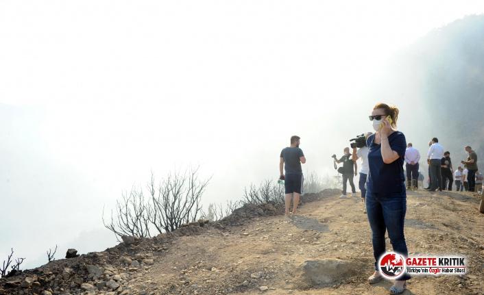 Balçova Belediye Başkanı Fatma Çalkaya : Yanan her ağaçla canımız yanıyor
