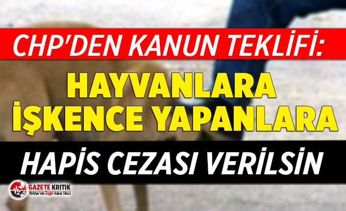 CHP'den kanun teklifi: Hayvanlara işkence yapanlara hapis cezası verilsin