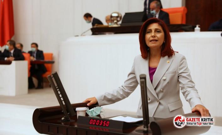 CHP'li Gülizar Emecan: Gazetelere ceza, binalara...