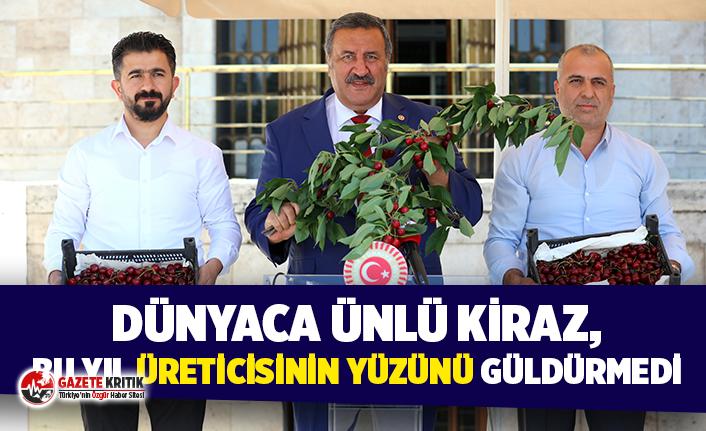 """CHP'li Gürer: """"Kiraz üreticisi tüccara mahkûm"""""""
