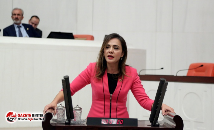 CHP'li İlgezdi: 'Yeni sistem hak ve özgürlüklerde...