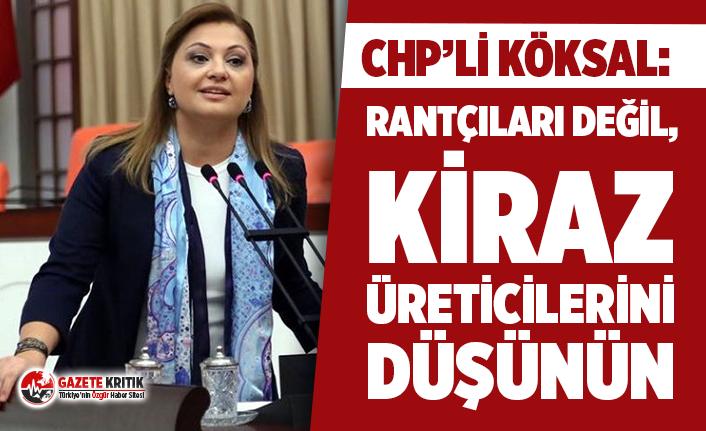 """CHP'li Köksal: """"Rantçıları değil, kiraz üreticilerini düşünün"""""""
