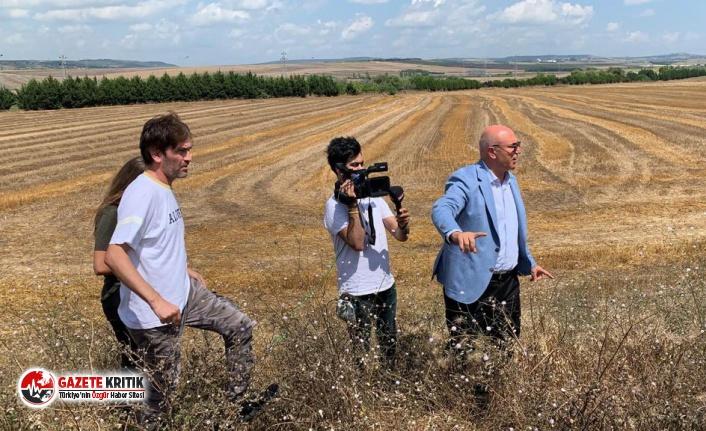 CHP'li Tanal, çiftçiyi zor durumda bırakan DEDAŞ'ı EPDK'ya da şikayet etti