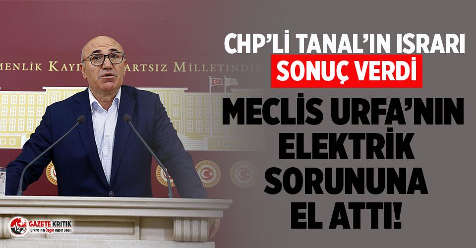 CHP'li Tanal'ın İnadı MHP'li Meclis...