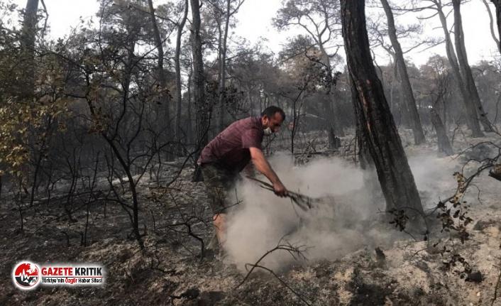 Heybeliada'da meydana gelen yangın kontrol altına alındı