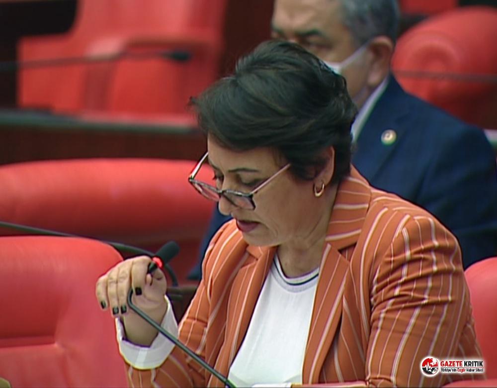 Şevkin, mecliste Adana'nın sorunlarını haykırıyor