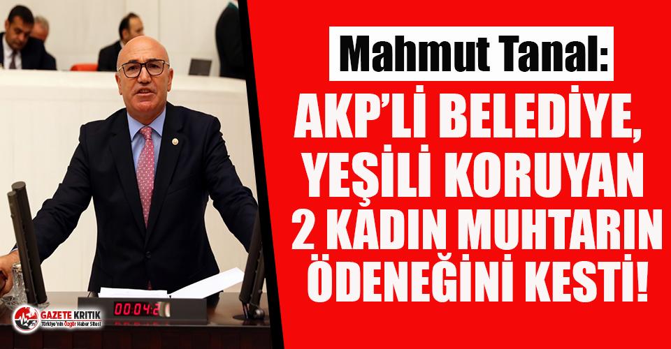 AKP'li belediye, yeşili koruyan 2 kadın muhtarın ödeneğini kesti!