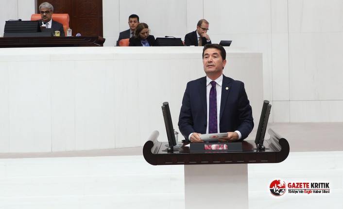 CHP'li Ahmet Kaya: 'Fındık sezonu hayırlı...