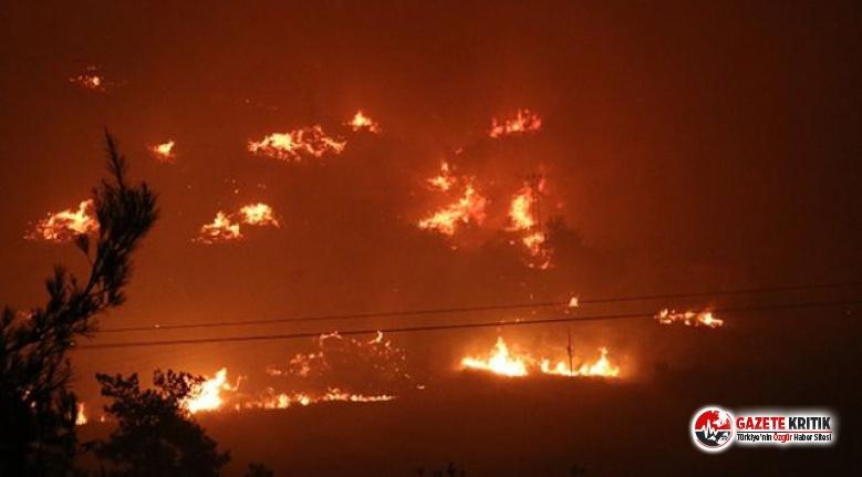 İzmir'de yangın rüzgarın etkisiyle devam ediyor... Tahliye edilen 1 site yandı!