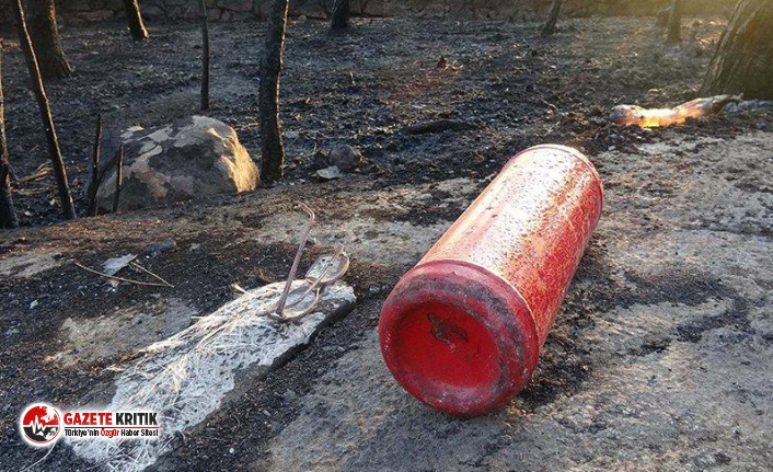Ayvalık'ta 80 hektar ormanlık alan yandı; vahim...