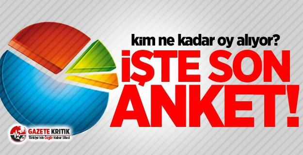 Çarpıcı anket sonuçları açıklandı! AKP ve...
