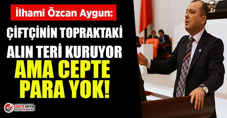 CHP'li Aygun: Avanstan önce 2020 tarımsal destekleme ödemelerini yapın!