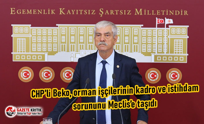 CHP'li Beko, orman işçilerinin kadro ve istihdam...