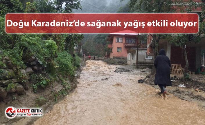 Doğu Karadeniz'de sağanak yağış etkili oluyor