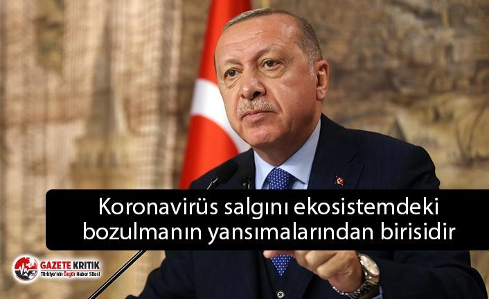 Erdoğan, BM Biyolojik Çeşitlilik Zirvesi'nde konuştu: Koronavirüs salgını ekosistemdeki bozulmanın yansımalarından birisidir