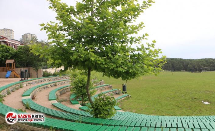 Kartal Belediyesi'nin Sorumluluğundaki Yeşil Alan...