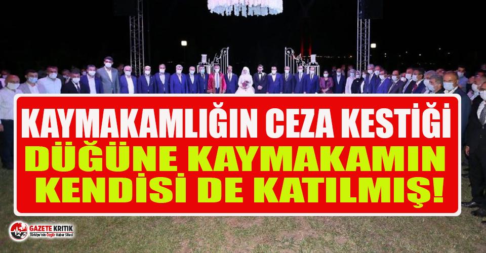 Kaymakamlığın ceza kestiği AKP'li Yaman'ın düğününe kaymakamın kendisi katılmış