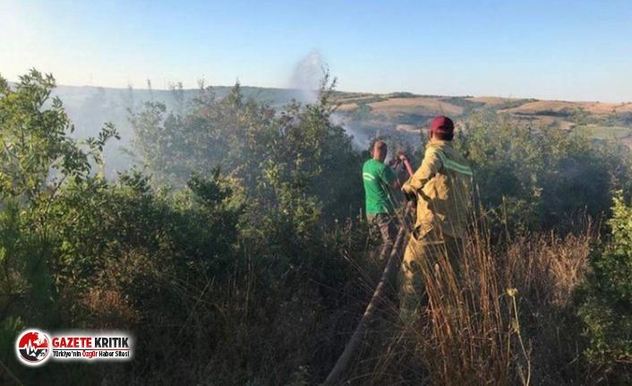 Tekirdağ'daki orman yangınları kontrol altına...