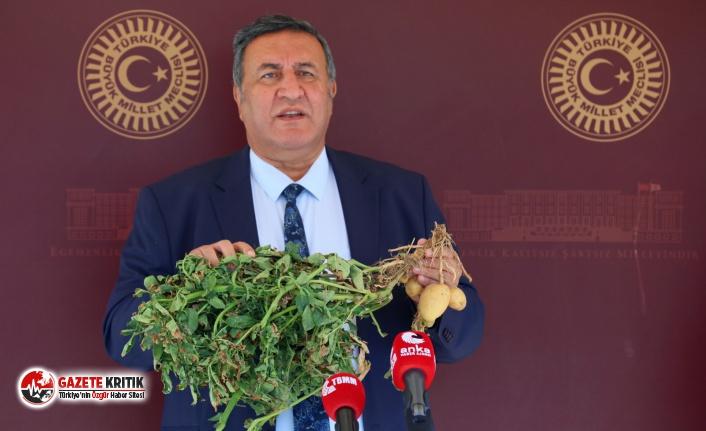 "CHP'li Gürer: ""Patates tarlada 50 kuruş,..."