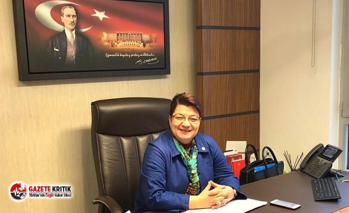 CHP'li Suzan Şahin: Yangınları çıkaranları açıklamak devletin görevidir