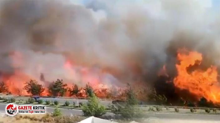 Hatay'da büyük panik! Orman yangını evlere...