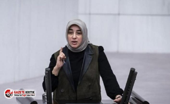 AKP'li Zengin Işıkçıların yazarını mahkemeye verdi