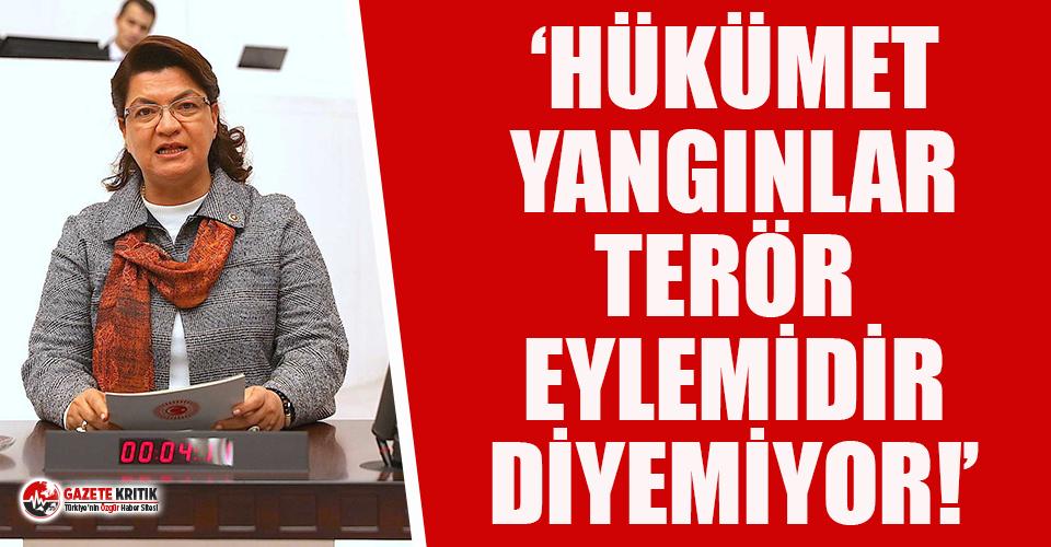 CHP'li Şahin: Hükümet yangınlar terör eylemidir...