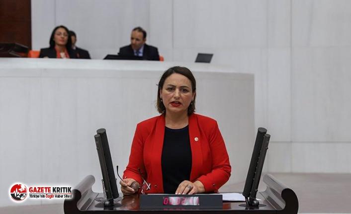 "CHP'li Şevkin: ""Derdi vatandaşa, parası yandaşlara!"""