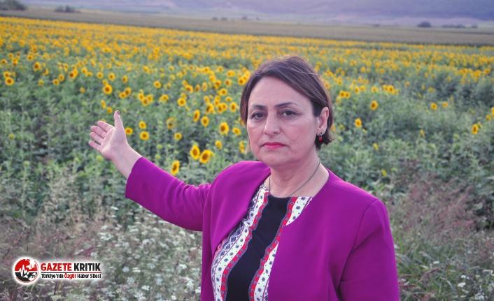 CHP'li Vekilden tarım arazilerinden emlak vergisi...
