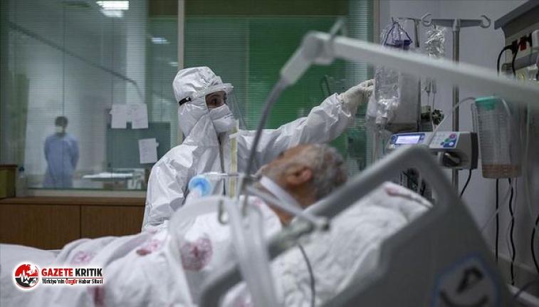 Edirne Sağlık Müdürlüğü rakamları açıkladı:...
