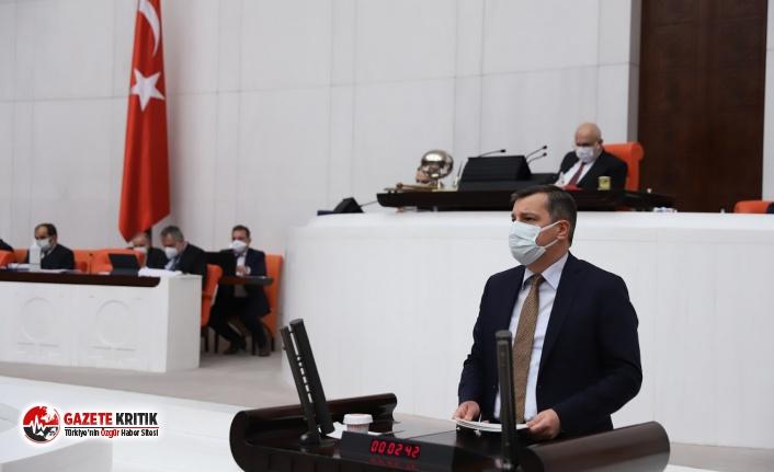 CHP'li Ceylan iktidarın çevre politikalarını topa tuttu