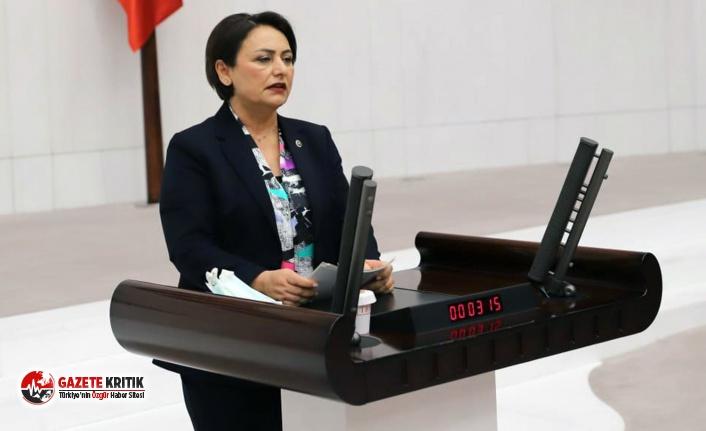 CHP'li Şevkin:Özgürlükten eser kalmadı,...