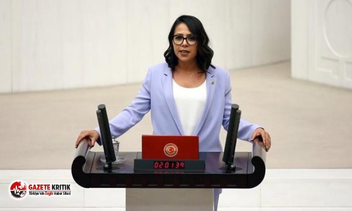 CHP'li Kadıgil: Kutsal gördüğünüzü iddia ettiğiniz anaların bile haklarını çalıyorsunuz