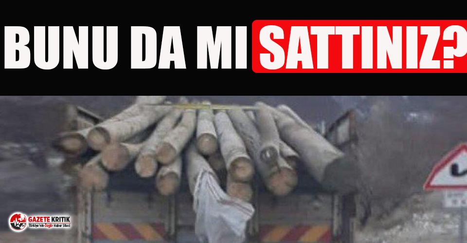 'AKP İlçe Başkanı elektrik direklerini satarken...