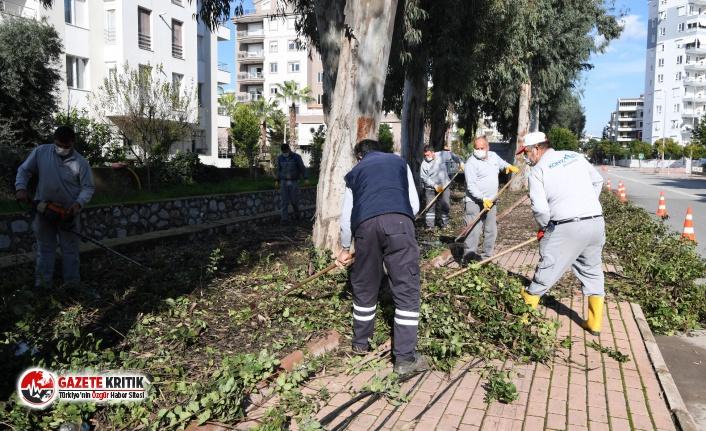 """Başkan Esen: """"Konyaaltı her zaman yeşil"""""""