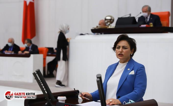 CHP'li Şevkin: AÖF 'kopya', öğrenciler 'sistem hatası' diyor