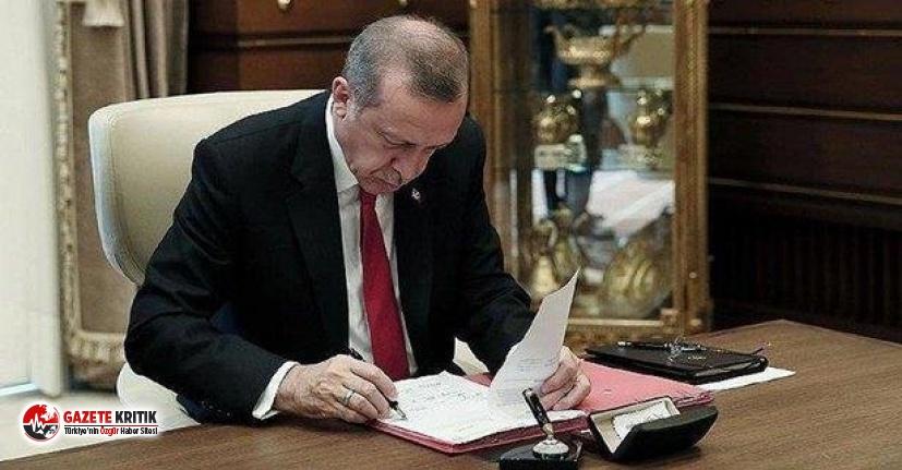 Erdoğan imzaladı! 5 üniversiteye yeni rektör
